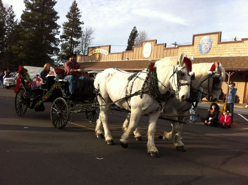 Sisters Christmas Parade (45)