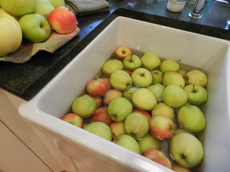 Apple Day (1)