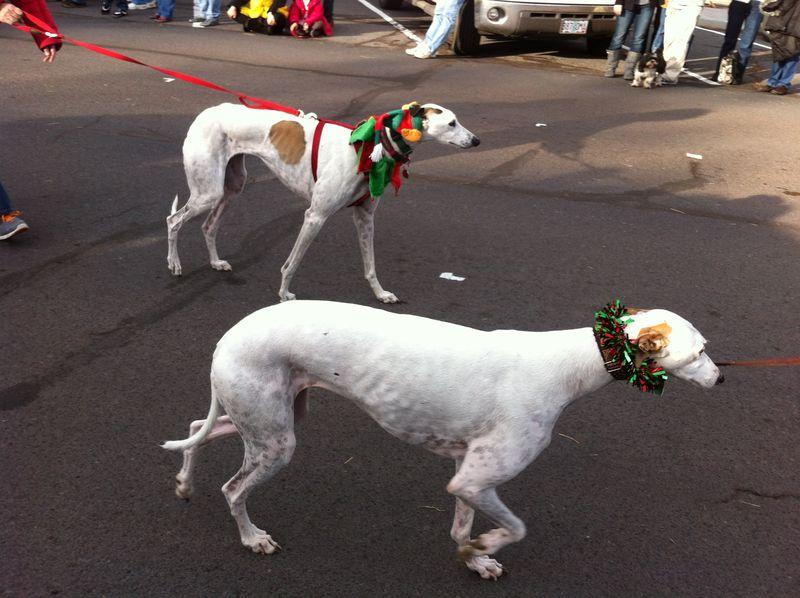 Sisters Christmas Parade (48)