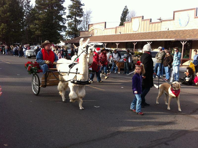 Sisters Christmas Parade (21)