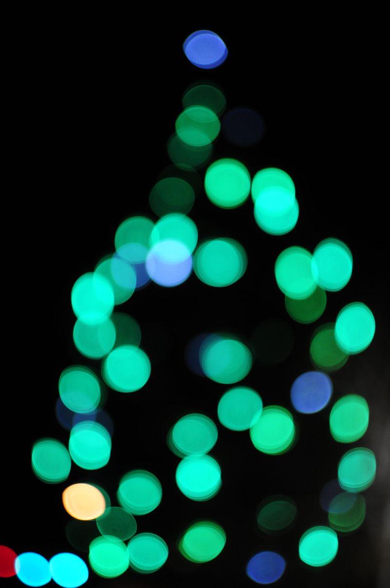 Bend Tree Lighting 2012 (14)