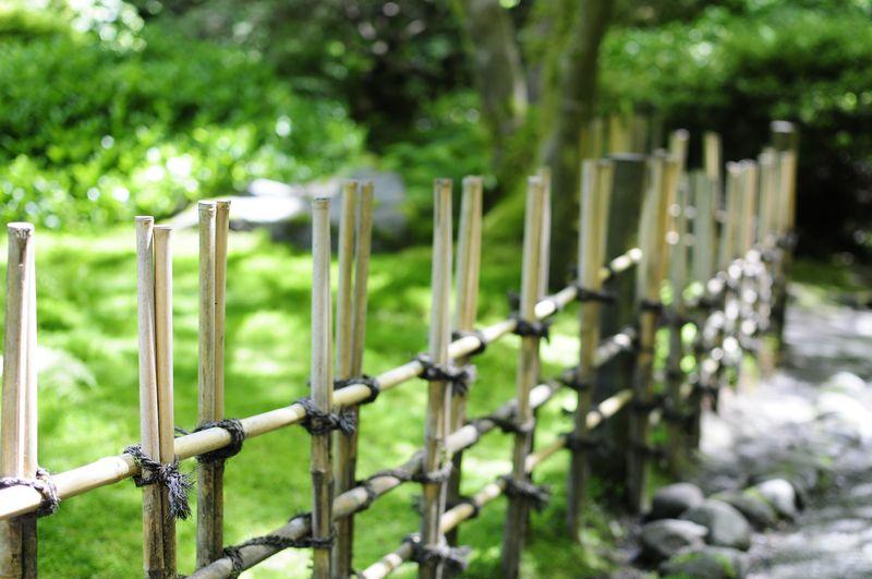 Portland Japanese Garden (2)