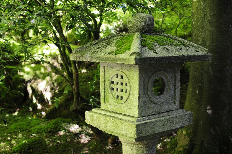 Portland Japanese Garden (20)