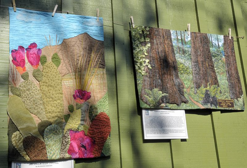 Sisters Show 2014 CA State Park Quilts (6)