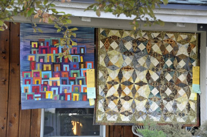 Sisters Show 2014 Featured Quilter (1)