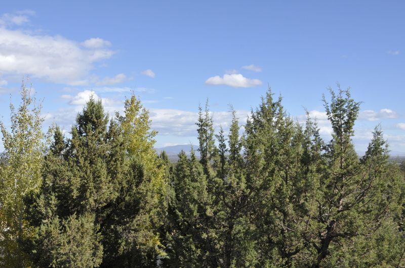 UCQ Retreat 2014  (4)