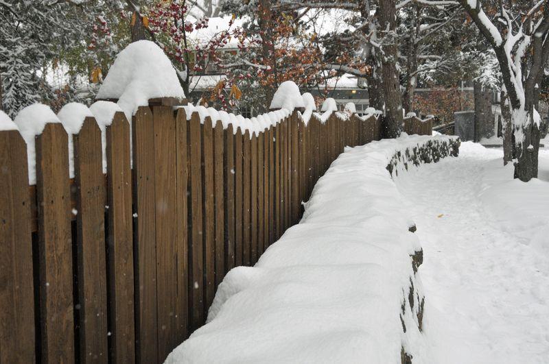 November 13 Snow (34)